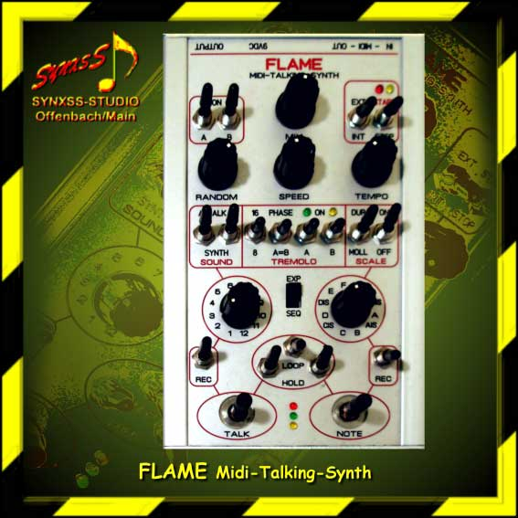 http://aliens-project.de/bilder/equipment/flame_talking_synth.jpg