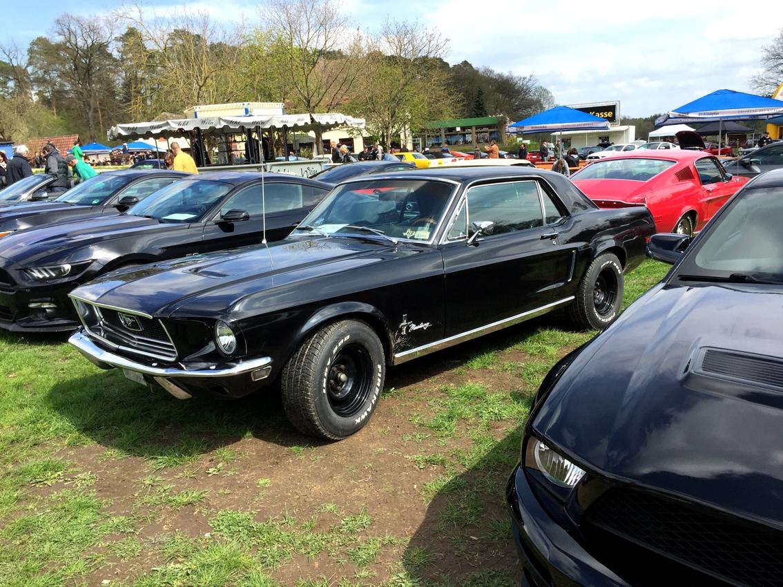 Mustang Days 2016-01
